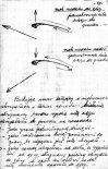 Notatki z obserwacji ptaków. (Źródło: archiwum Zbigniew Sułkowski).