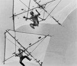 Bob i Chris Wills z USA na swoich lotniach. Bambus, taśma klejąca i celofan. Ok. 1963 r. (Źródło: archiwum).