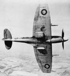 """Samolot Supermarine """"Spitfire"""" Mk.XII w widoku z dołu. (Źródło: archiwum)."""
