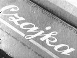 """Opakowanie modelu z napędem gumowym """"Czajka"""" produkowanego w WPM w Krośnie. (Źródło: archiwum)."""